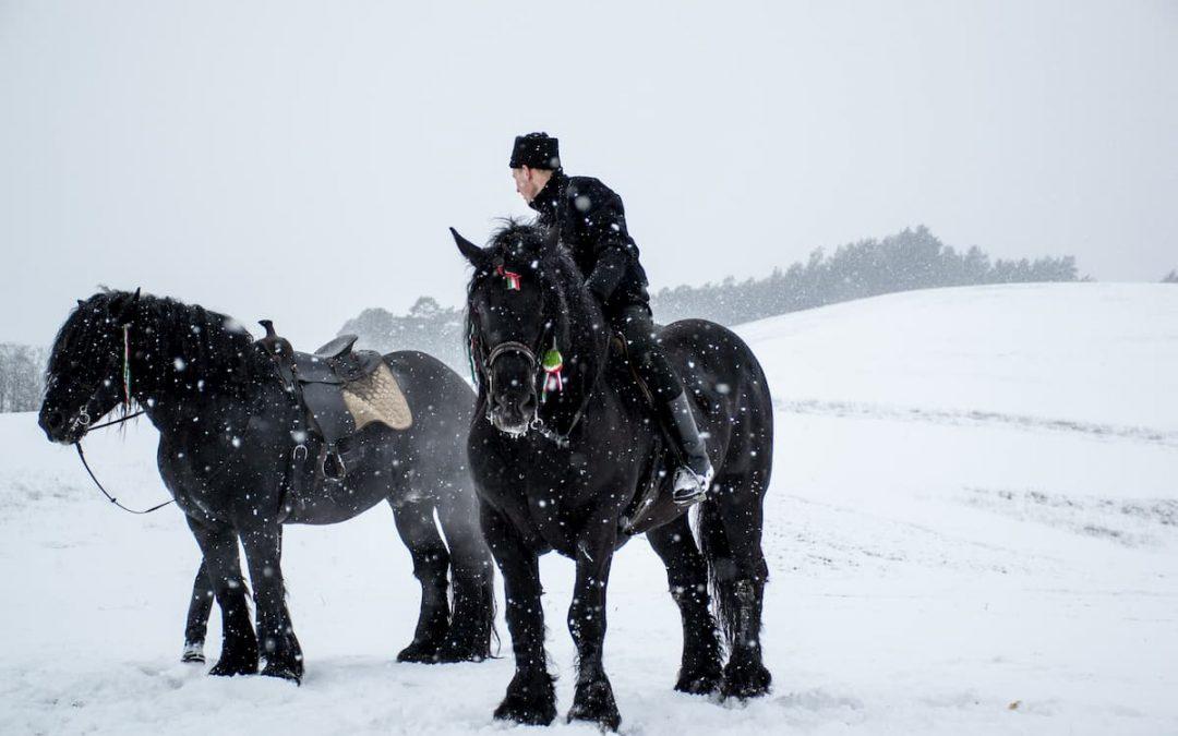 Equitation : comment s'équiper en hiver?